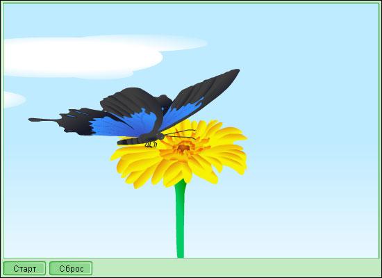 Модель 5 2 жизненный цикл бабочки